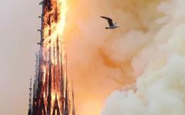 YouTube nhầm lẫn tai hại vụ cháy nhà thờ Đức Bà