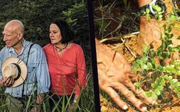 Nhiếp ảnh gia lừng danh 'về vườn' cùng vợ dành 20 năm trồng cây, thổi lại sự sống và phủ xanh cho vùng đất chết rộng hơn 1500 héc-ta