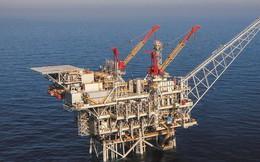 Tổng thống Trump phàn nàn, giá dầu giảm thê thảm