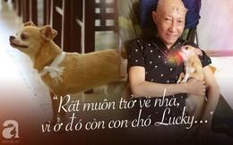 Rơi nước mắt với hình ảnh chú cún nhỏ buộc khăn tang trắng, quanh quẩn không rời bên linh cữu cố nghệ sĩ Lê Bình