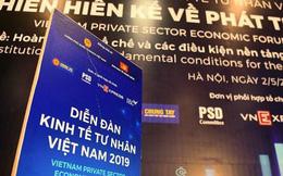 'Sếu đầu đàn' Vingroup, Thaco... hiến kế gì để phát triển kinh tế tư nhân?