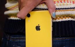 iPhone sẽ có công nghệ màn hình 'thần thánh' chưa từng có trên bất kỳ smartphone nào