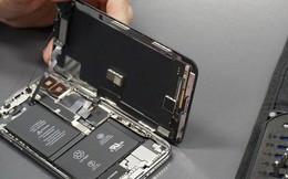 Tự ý sửa iPhone có thể gây hại cho chính bản thân mình - Apple cảnh báo người dùng