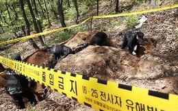 Hàn Quốc phát hiện hơn 90 mảnh xương trong khu phi quân sự