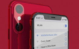 Chân dung iPhone XR 11 với thiết kế đẹp khó tin