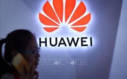 """Mỹ giáng đòn mạnh nhằm vào """"con cưng"""" Huawei của TQ, Bắc Kinh lập tức phản ứng"""