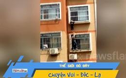 Video: Nghẹt thở cứu bé trai lơ lửng ngoài ban công tầng 7