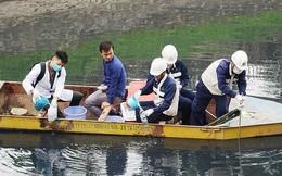 Thí điểm xử lý ô nhiễm nước sông Tô Lịch: Giảm mùi nhưng nước vẫn đen kịt
