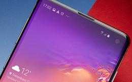 Chuyên gia nhận định Samsung sẽ lãi thêm ít nhất 1 tỷ USD nhờ 'thảm họa Huawei', nhưng không cẩn thận là cũng ngã đau
