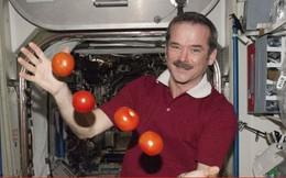 5 loại thực phẩm các phi hành gia không được ăn ở ngoài vũ trụ