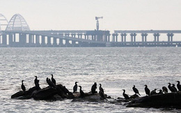 Ukraine sẽ tìm kiếm vị thế quốc tế cho Eo biển Kerch