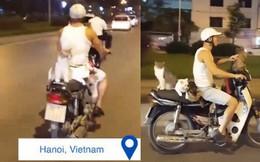 Clip: Anh trai chở 4 boss mèo đi xe máy ở Hà Nội khiến dân mạng quốc tế vừa thích thú vừa tranh cãi rần rần