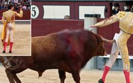 Đấu sĩ Tây Ban Nha bị bò tót húc thủng mông và phản ứng đầy bất ngờ của dân mạng