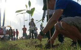 Philippines: Học sinh, sinh viên phải trồng 10 cây xanh mới được tốt nghiệp