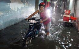 """Dự báo mưa rất kém, hỏi thì nói """"mưa rải rác vài nơi""""!"""