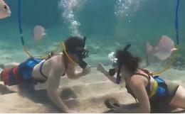 Video: Chàng trai cầu hôn bạn gái dưới đáy biển Caribe cực ấn tượng