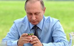 Hé lộ chế độ dinh dưỡng của TT Putin để giữ thân hình tráng kiện tuổi 65
