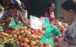 Táo Mỹ 40.000 đồng/kg ngập chợ Sài Gòn