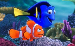 Tại sao gần như tất cả các loài cá đều có chung một hình dạng giống nhau?