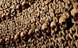 Bí ẩn rợn tóc gáy dưới lòng Paris hoa lệ: Một căn hầm chứa tới hơn 6 triệu bộ xương người