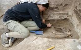 """Hài cốt 9.000 năm tiết lộ """"lời nguyền"""" thành phố cổ"""