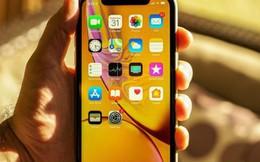 Đây sẽ là chiếc iPhone đáng mua nhất của Apple trong năm 2019