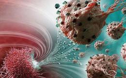 Nhịn ăn để giết tế bào ung thư?