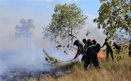 Nắng nóng gay gắt tiếp diễn ở Bắc và Trung Bộ, nguy cơ cháy rừng cao