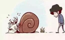 Câu chuyện 'Dắt con ốc sên đi dạo' - bài học dạy con ý nghĩa cha mẹ nên đọc ít nhất 1 lần