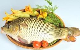 Cá chép: Lợi tiểu, tiêu phù
