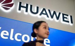 Nhân viên chính phủ Mỹ vẫn được yêu cầu cảnh giác với Huawei