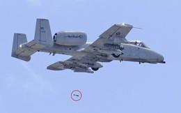 Bất thình lình đâm phải chim, chiến đấu cơ Mỹ đánh rơi 3 quả bom