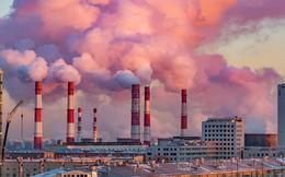 Ô nhiễm môi trường có thể tác động đến não
