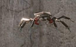 """Cùng tìm hiểu về Spider-Tracers: Những """"chú nhện con"""" đáng yêu của Spider Man"""