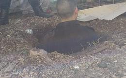 Ròng rã đào hầm vượt ngục 2 ngày, không ngờ dẫn tới cũi chó