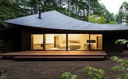 Ngôi nhà có phần mái như một 'chiếc lá khổng lồ' nằm giữa rừng cây ở Nhật Bản gây chú ý với vẻ đẹp tối giản