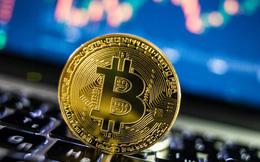 Bitcoin rơi 'xuống vực thẳm' sau câu nói của ông Trump