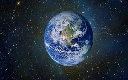 Nếu con người biến mất thì loài nào sẽ thống trị Trái Đất?