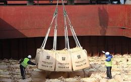 Mỹ và WFP thảo luận miễn trừng phạt viện trợ lương thực cho Triều Tiên