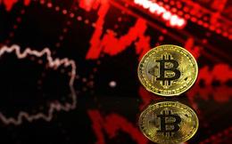 Bitcoin vượt bão giảm giá, vọt qua mốc 10.000 USD