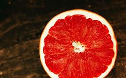 Những thực phẩm giúp giải độc cực tốt trong ngày hè nóng nực