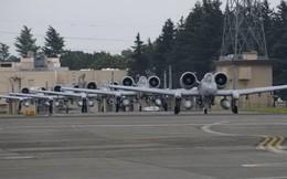 Cường kích A-10 Mỹ bất ngờ tới Hàn Quốc để răn đe Triều Tiên?