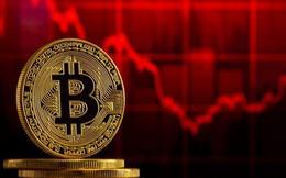 Bitcoin kẹt trong 'cơn lốc' giảm giá