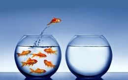 7 cột mốc báo hiệu cuộc sống của bạn bắt đầu lên dốc, trúng 3 trở lên nghĩa là bạn sắp đổi vận!