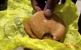 Thấy miếng sandwich bị cắn dở, cảnh sát vội buộc tội nhân viên giao hàng rồi sực nhớ... chính mình là thủ phạm
