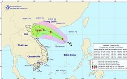Áp thấp nhiệt đới mạnh lên thành bão, đổ bộ Quảng Ninh-Nam Định