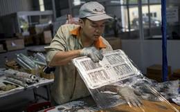 """New York Times: """"iPhone tiếp theo của bạn có thể được sản xuất tại Việt Nam. Hãy cảm ơn cuộc chiến thương mại"""""""