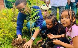 Kỷ lục đáng nể của Lục địa Đen: Trong 12 giờ, Ethiopia trồng được 350 triệu cây xanh