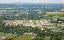 Đấu giá 2 khu đất với tổng diện tích gần 84ha, giá khởi điểm hơn 2.200 tỷ đồng tại Long Thành
