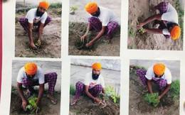 Ấn Độ: Muốn sử dụng súng hãy trồng cây